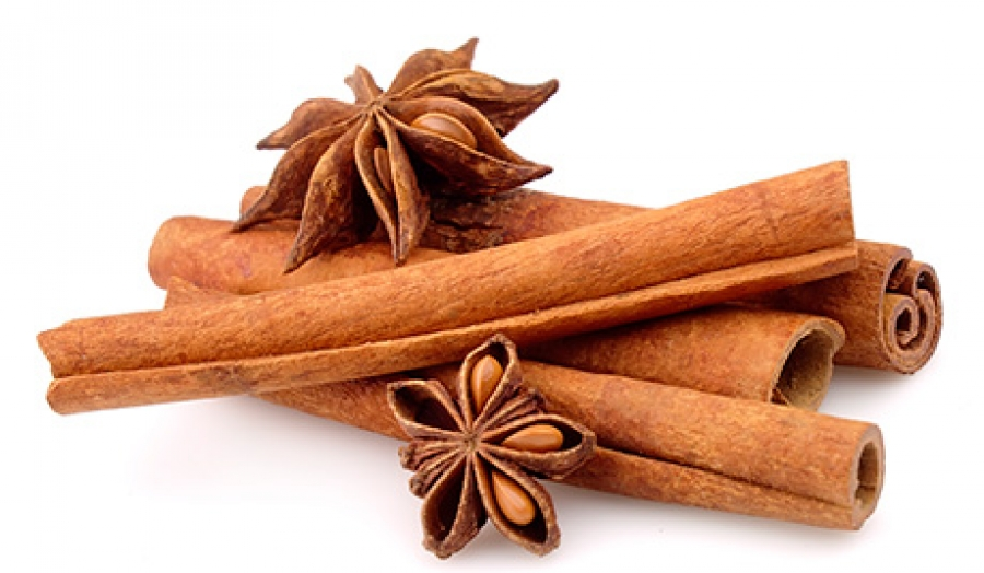 Cinnamon may be used to halt progression of Parkinson's disease