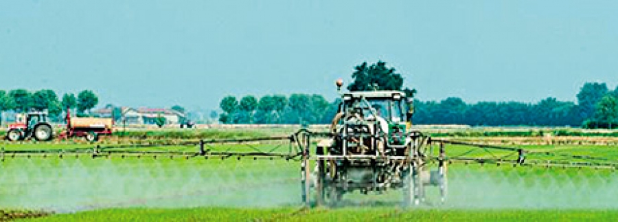 Pesticides: breakthrough on cumulative risk assessment