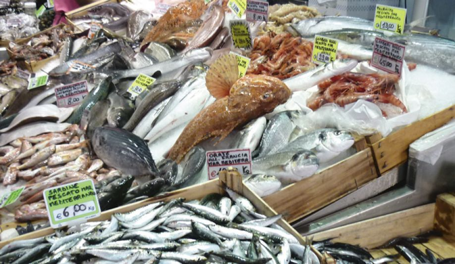 Global fish and seafood market will see consistent healthy growth