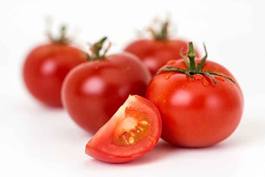 Engineering higher phenylpropanoid levels in tomato