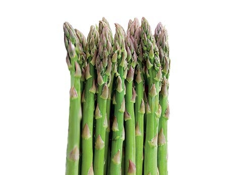 Bioactive extracts from asparagus by-product