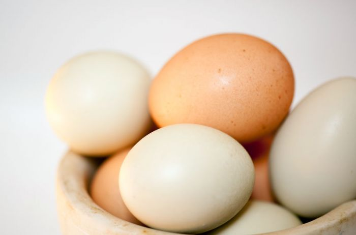 Regulation EU 2018/991 authorising the placing on the market of hen egg white lysozyme hydrolysate as a novel food