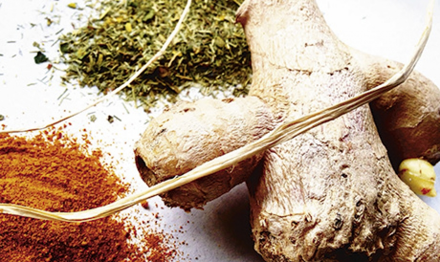 Multicultural wellness ingredients: culinary trend tracking series