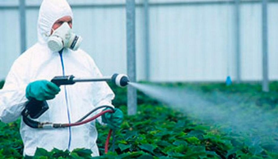 Commission Regulation EU 2016/1902 as regards maximum residue levels for certain pesticides in food