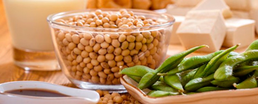 Soybean foods may protect menopausal women against osteoporosis