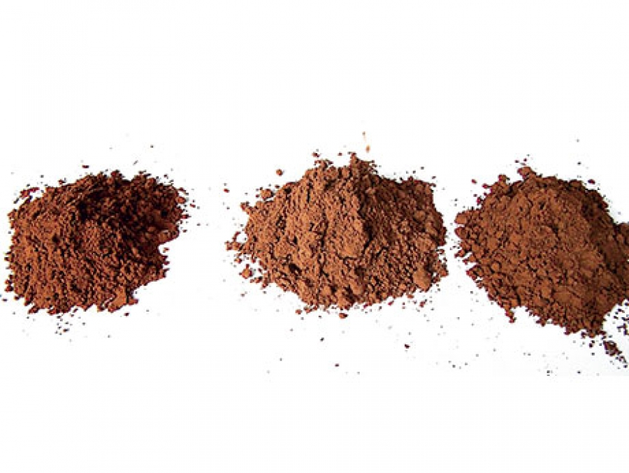 Cocoa powder triggers neuroprotective and preventive effects in a human Alzheimer's Disease