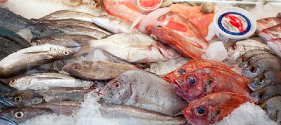 Commission Regulation (EU) No 1019/2013 as regards histamine in fishery products