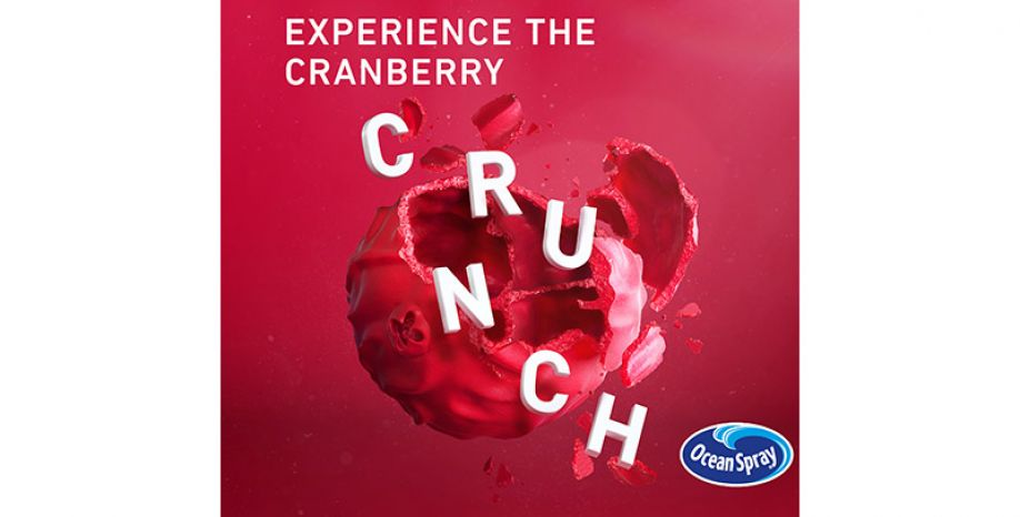 A revolution in the food product sector: Crunchy Cranberries™ by Ocean Spray