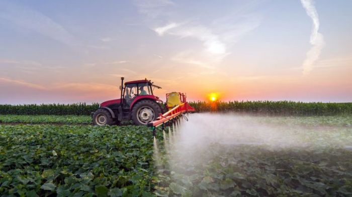 Regulation EU 2019/1559 of as regards maximum residue levels for some pesticides in food