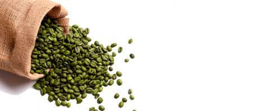 Green coffee beans as a functional food supplement