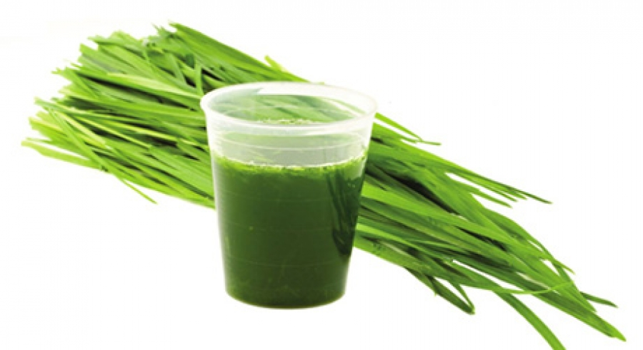 Wheatgrass gaining from greens revolution