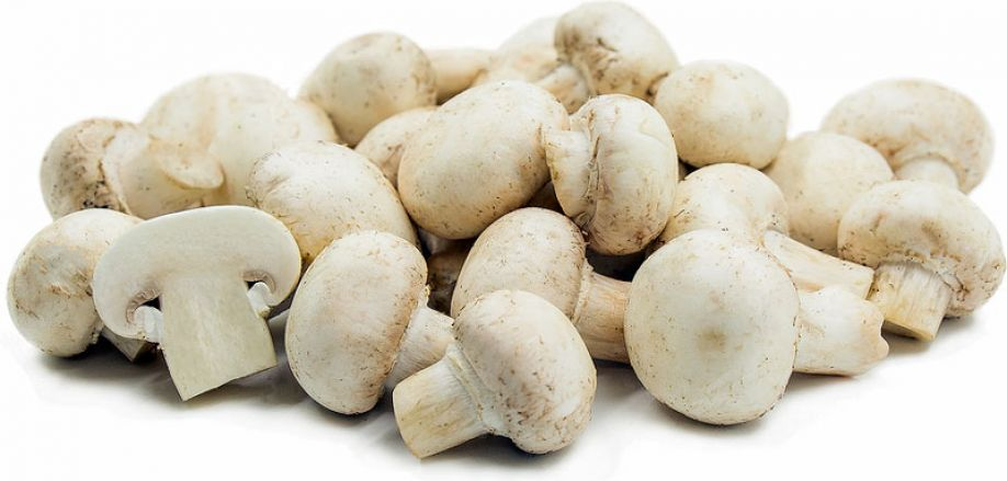 Using mushrooms as a prebiotic may help improve glucose regulation