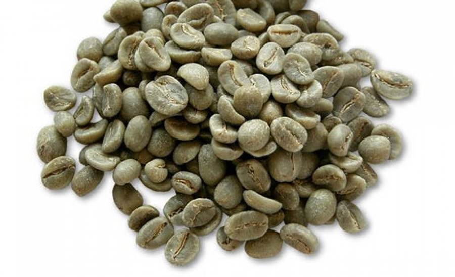International consortium releases genome sequence of robusta coffee