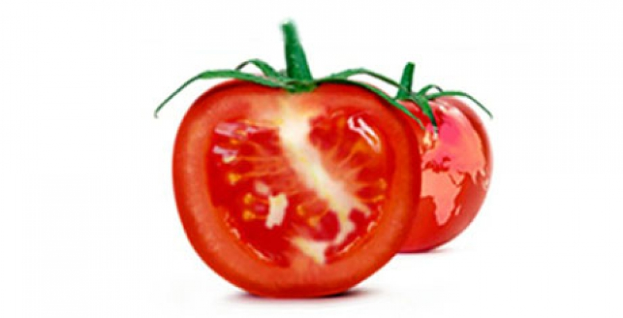The World Processing Tomato Congress will be held in Italy